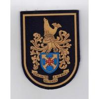 Emblema Novo Modelo Comando Da Madeira